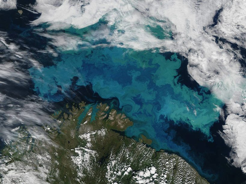 NASA plans to study earth like a giant fish tank, discovering ocean's secret sea life from space