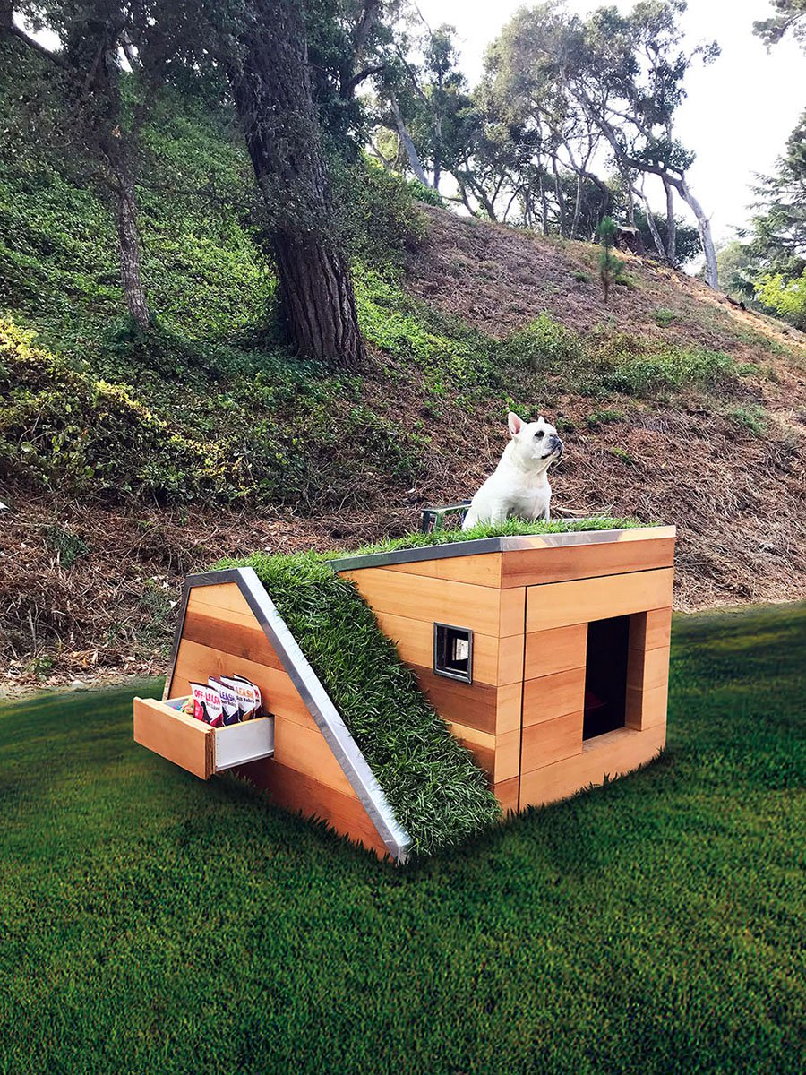 studio schicketanz's doggy dreamhouse designboom