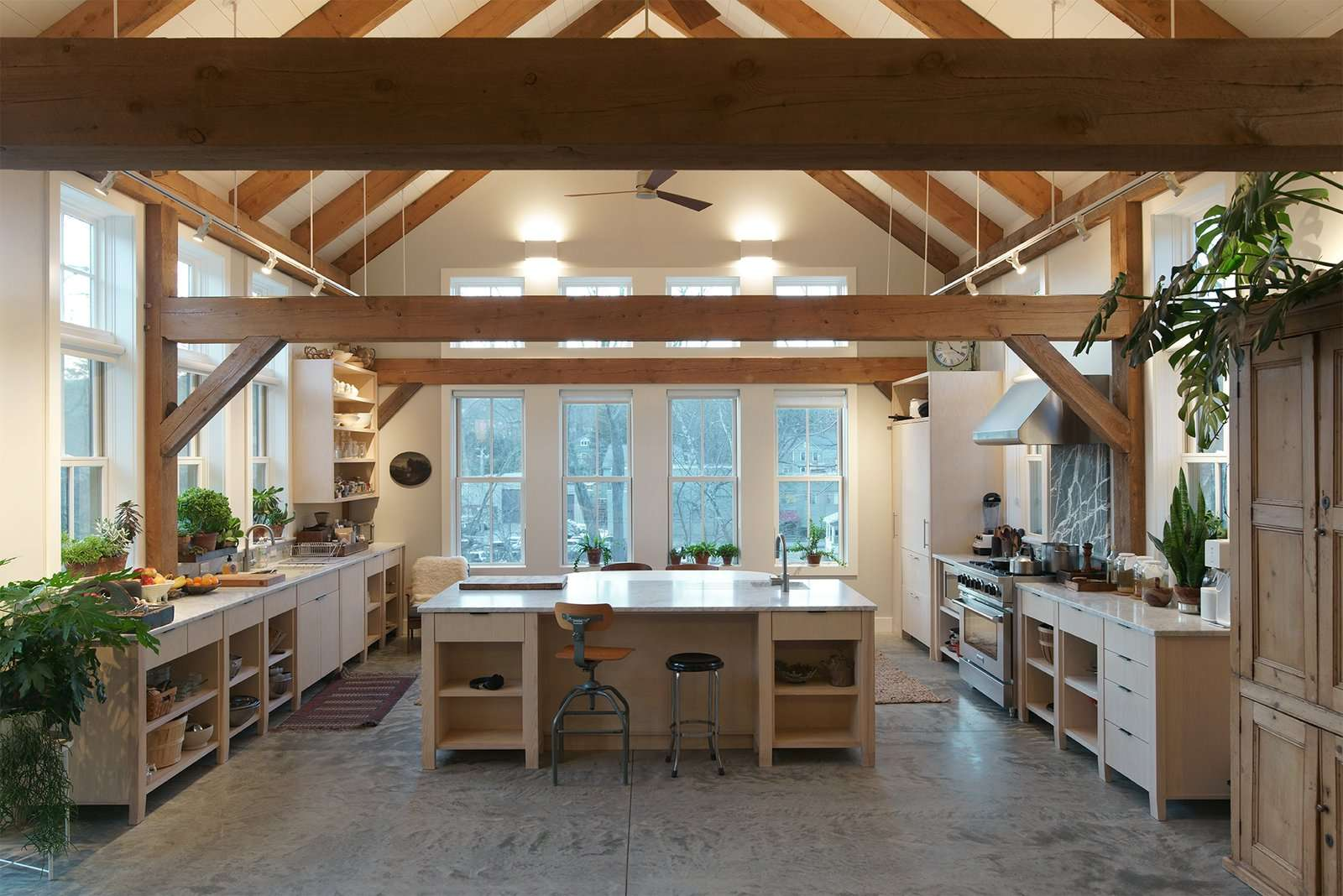 One of the houses being used by a landscape designer friend is filled with plants, capturing the many exposures of its open kitchen and living area.