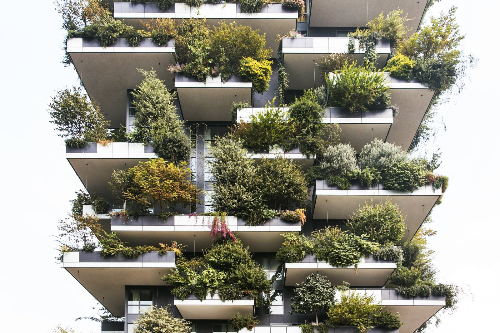 Bosco Verticale, or Vertical Forest, houses 800 trees in addition to its human residents. Pronounced balconies make space for large tubs in which the vegetation is planted, and the staggered nature of the balconies allows unhindered growth. The firm undertook a three-year planning process with a team of botanists and ethologists to choose the plant species.