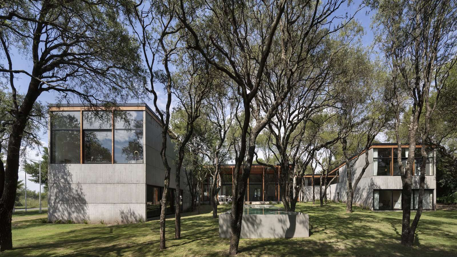 An outdoor pool is situated among the trees, allowing swimmers to be completely immersed in nature. Like the home, its footprint was determined by the existing trees on the site, and its otherwise geometric form is playfully interrupted by a diversion around a tree trunk.