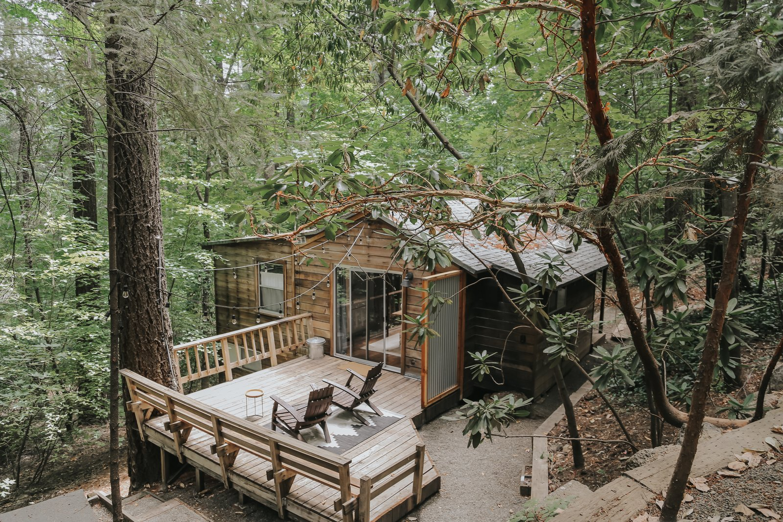 """Nestled among towering fir trees and magnificent dogwoods in Cobb, California—just an hour north of Napa Valley—is the 700-square-foot cabin Hope Mendes recreated as an idyllic family escape. """"We've always had a dream of owning and renovating a cabin in the woods,"""" Hope says, """"a place [where] we could take our kids when we need to get away from the hustle and bustle of our work lives."""""""