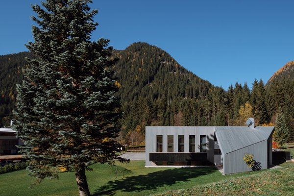 An old silver fir became a focal point in the design and guided the shape and orientation of House L.