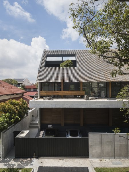 A tall tree grows through a large aperture in the mono-pitched roof, bringing an outdoor feel to the inside of the house.