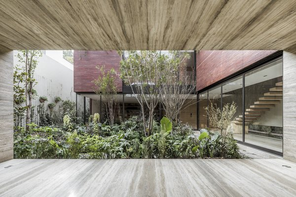"""The landscaping was created in collaboration with landscape architecture studio Entorno. """"They are extremely talented and have a deep knowledge and understanding of the right composition and best expression of the plants inside a space,"""" says designer Hector Esrawe."""