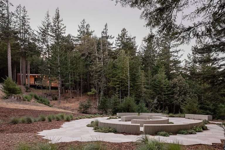 openscope gently frames california's better place forest with its timber visitor center