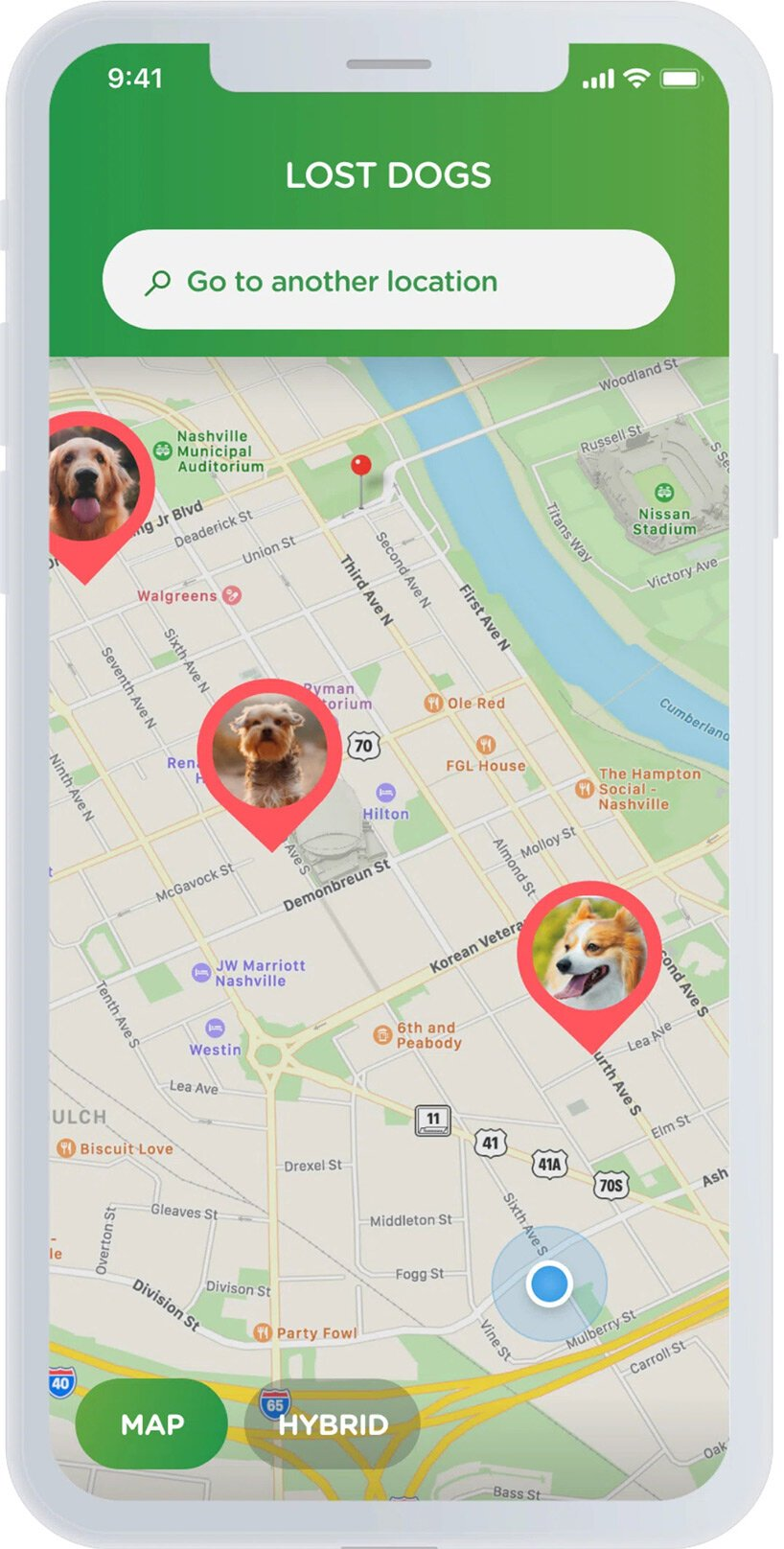 meet 'NOSEiD': the nose-scanning app that helps bring lost dogs home
