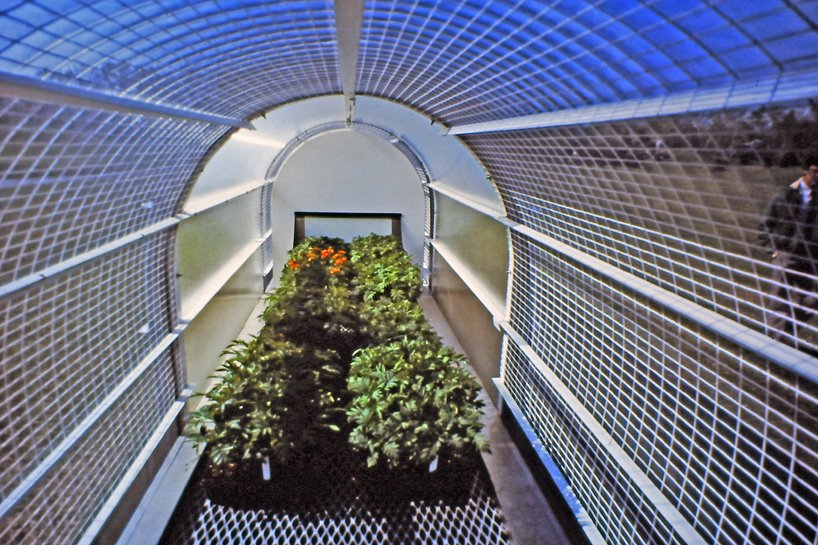 experimental 80s greenhouse explored how to grow plants more efficiently in cold climates