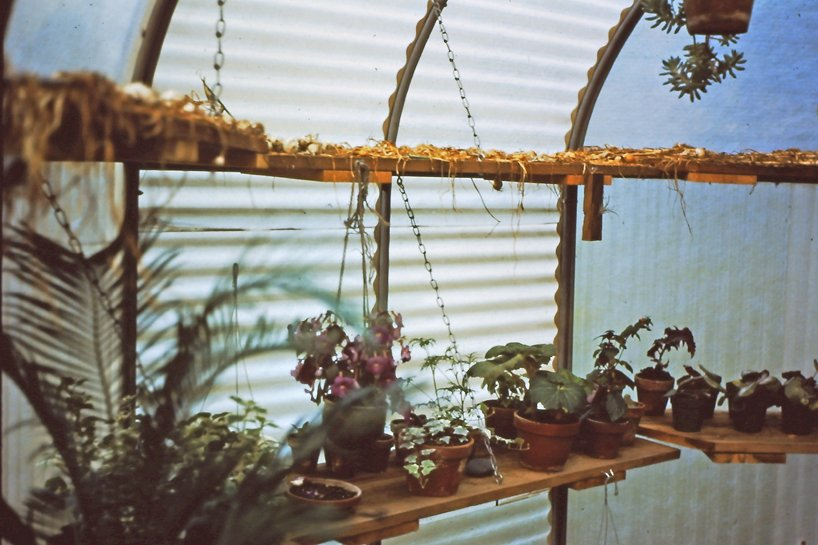 michael jantzen unveils a series of experimental greenhouses from 1972 to 1980