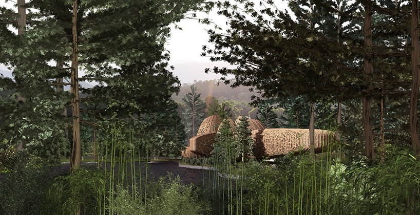 ded studio designs for bamboo structured wellness resort within chinese woodland 2