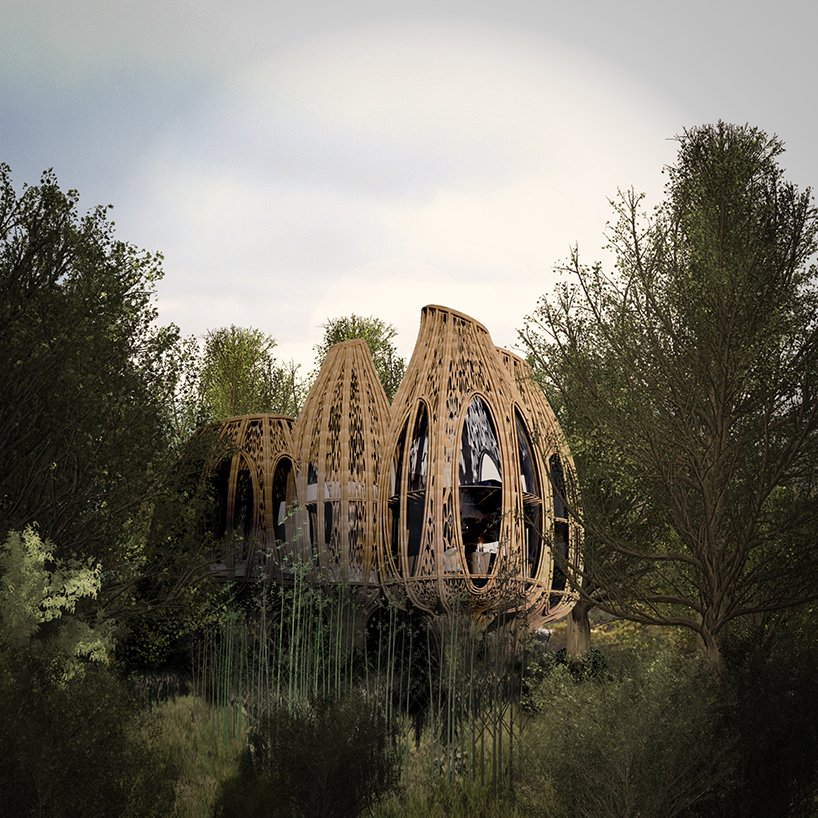 ded studio designs for bamboo structured wellness resort within chinese woodland 5