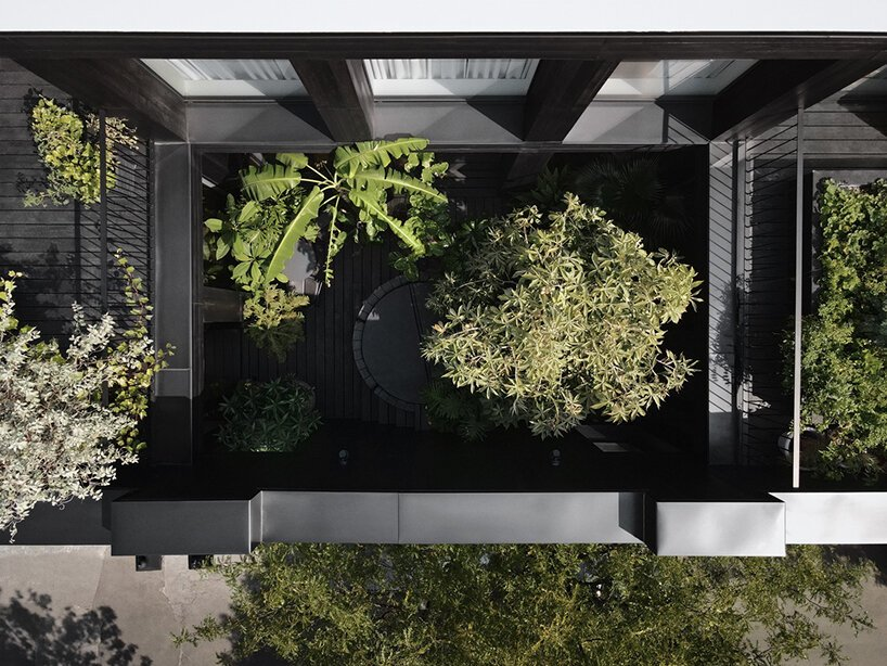open-air courtyard adds a pop of green to the humble interior renovation in canada