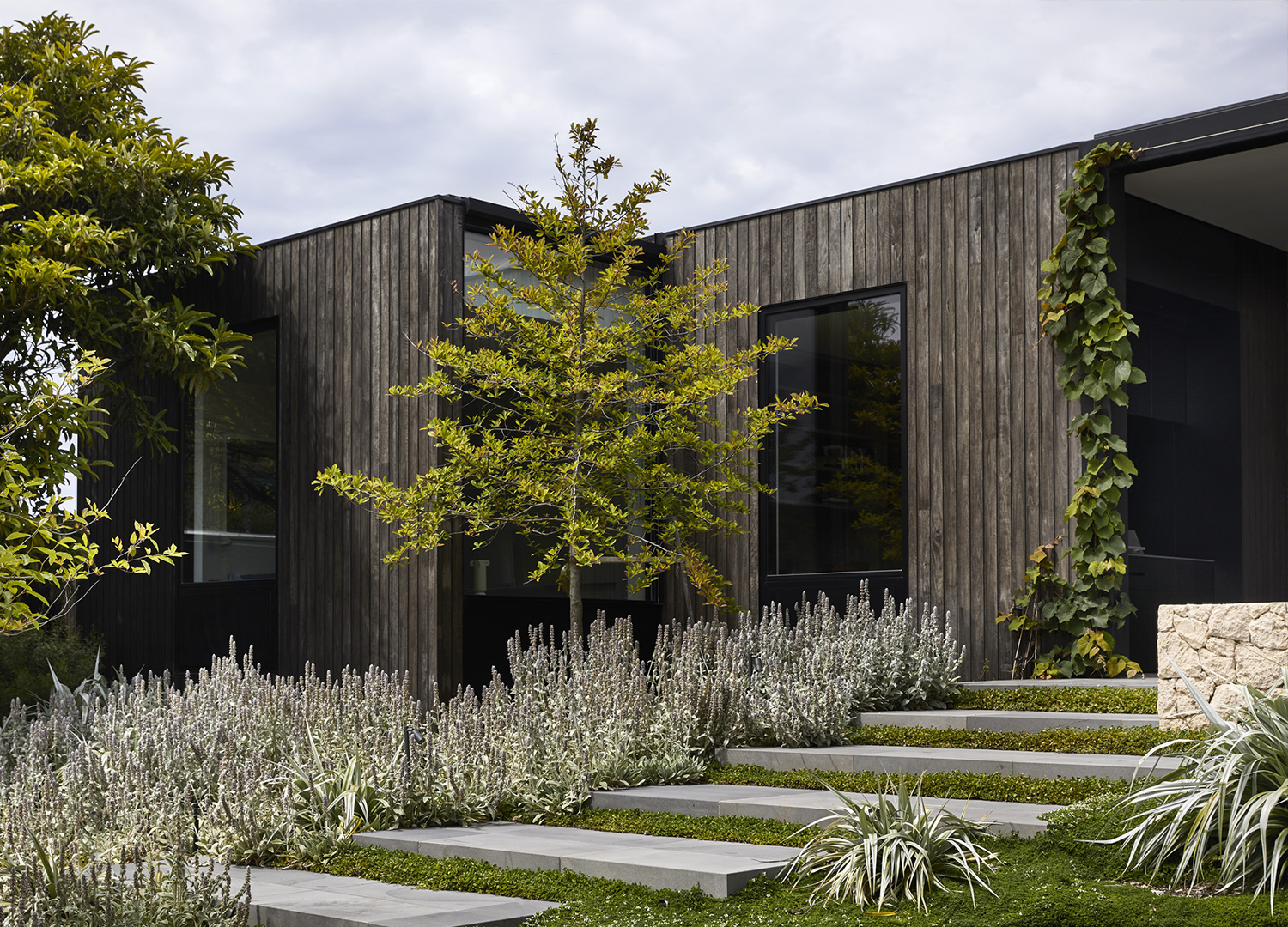 est living Blairgowrie House Powell and Glenn and Watts Studio 12